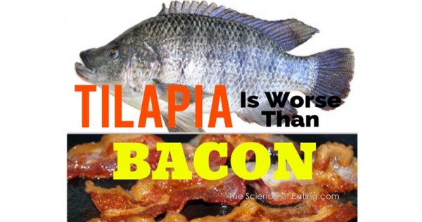 Health alert tilapia tops the list of the worse foods to for Is tilapia fish good for you