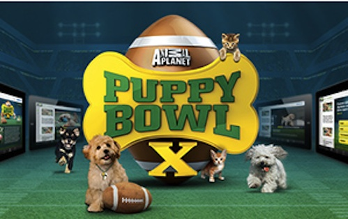 PuppyBowlX.logo_.2014