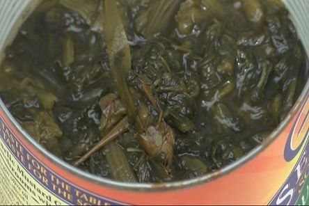 Virginia Mom Allegedly Finds A Grasshopper in A Can of Glory Greens!!!