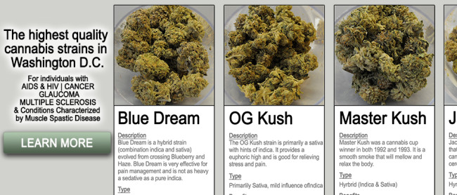 Medical-Marijuana3