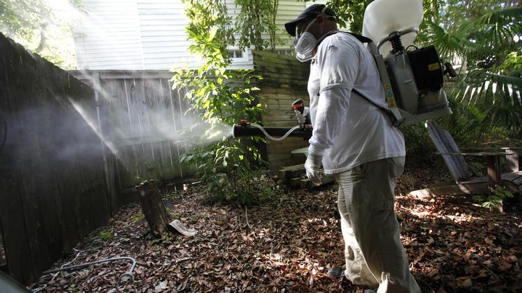 fl-gmo-mosquitoes-florida-keys-20150125-001