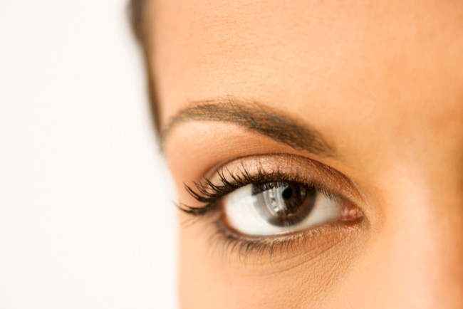 Now We've Seen It All: Eyebrow Wigs, The Next Big Thing!!!