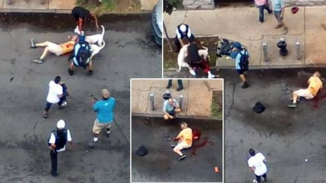 Woman Arrested After Sicking Pit-Bulls on A Man & Ordered Them To Attack [Graphic Video]