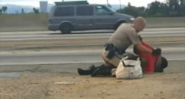 Cop Who Bashed In Black Womans Face On The Side Of The Expressway Will Not Be Charged, Claims He Was Protecting Her