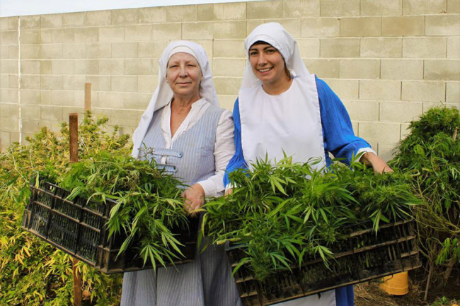Nuns Run An Illegal Marijuana Business Grossing Over $400K per Year, So Why Haven't They Been Arrested?