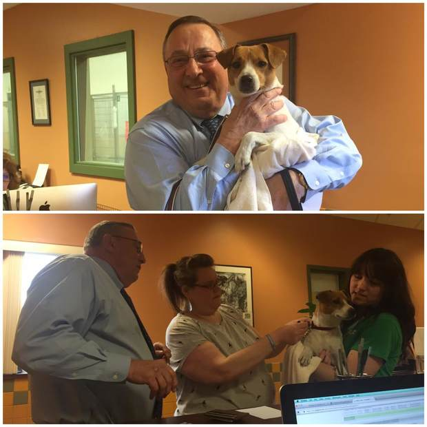 Gov. Paul LePage adopted a dog at the Greater Androscoggin Humane Society in Lewsiton on Tuesday.