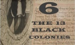 "New Book: ""The Negro Question Part 6 The 13 Black Colonies"""